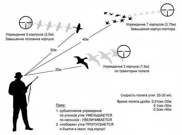 Особенности охоты с пневматической винтовкой